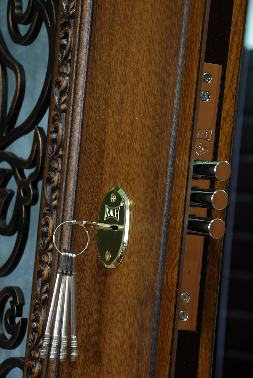 бронированные стальные двери в софрино