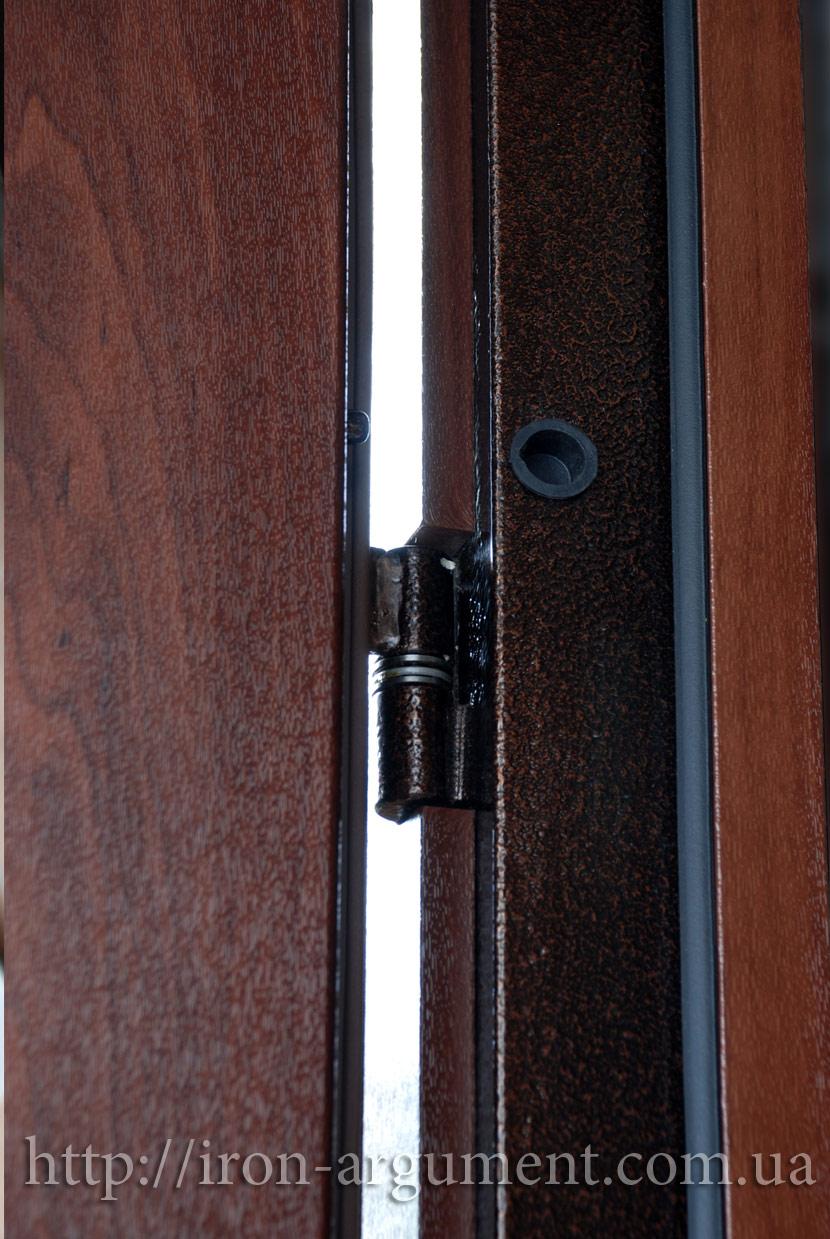 купить металлическую дверь на дачу порошковое покрытие