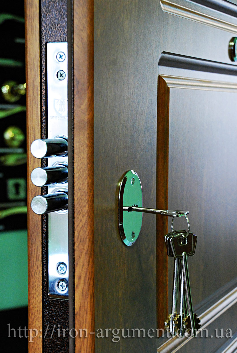 металлические двери эконом класса для дачи адреса магазинов